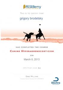 Dr. Grigory Brodetsky, DVM, Education